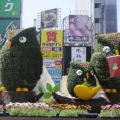 Ikebukuro owl