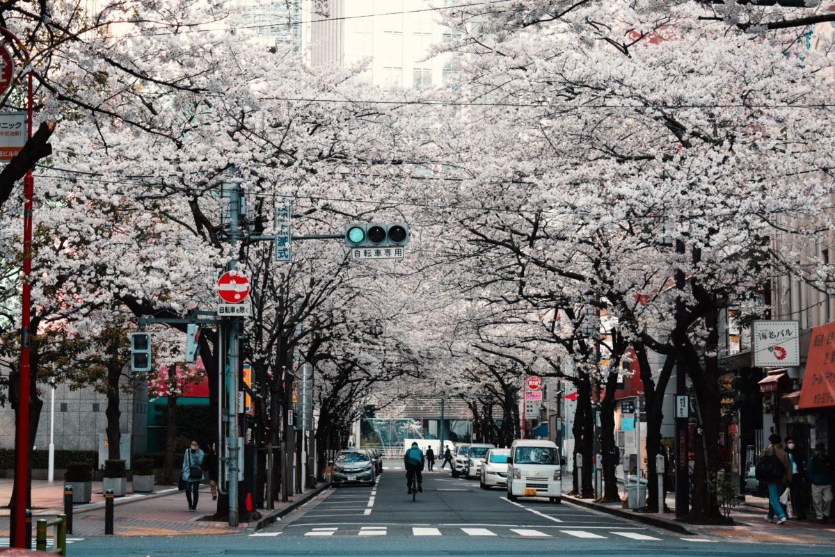 La mia vita in Giappone  – iniziata con una e-mail